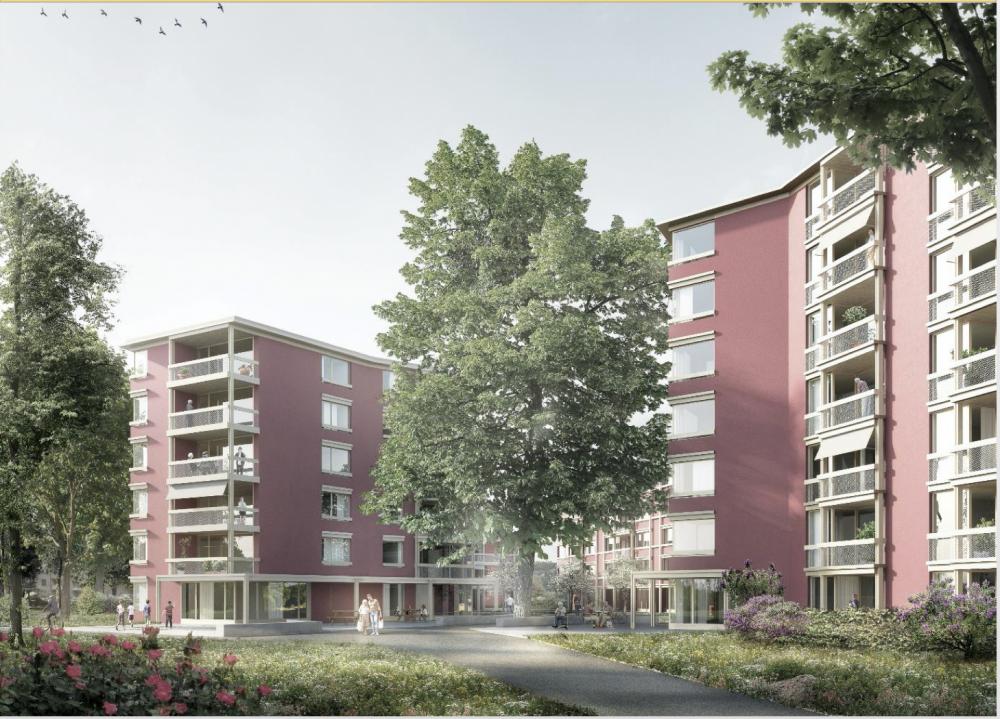Espenhof: So werden die Wohnhäuser aussehen.